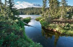 Laghi reflection in supporto Rainier National Park fotografia stock libera da diritti