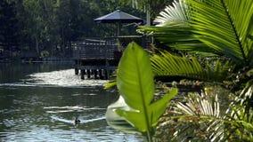 Laghi springfield nella città di Ipswich, Queensland, Australia archivi video