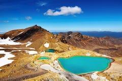 Laghi verde smeraldo, Nuova Zelanda fotografie stock