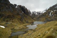 Laghi vicino a Harris Saddle, pista di Routeburn, Nuova Zelanda Fotografia Stock