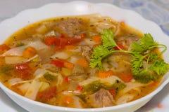 Lagman - traditionell maträtt från centrala Asien arkivfoto