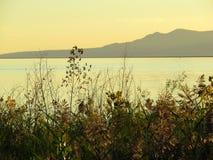 Lago à montanha Fotos de Stock