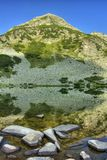 Lago 1.2 Muratovo Fotografía de archivo