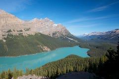 Lago 1 Peyto Fotografía de archivo libre de regalías