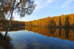 Lago 2 autumn Fotografia Stock Libera da Diritti