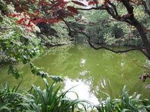 Lago Imagen de archivo libre de regalías