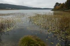 Lago Abant Imagen de archivo