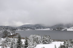 Lago Abant, Bolu - Turchia Fotografia Stock Libera da Diritti