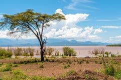 Lago Abaya Imagenes de archivo