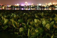 Lago ad ovest a notte di Hangzhou, Cina Fotografia Stock Libera da Diritti