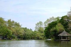 Lago adorabile Fotografie Stock Libere da Diritti