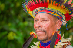 LAGO AGRIO, ECUADOR - NOVEMBER 17, 2016: Portrait of a Siona shaman in traditional dress with a feather hat in an. Indigenous village in the Cuyabeno Wildlife royalty free stock images