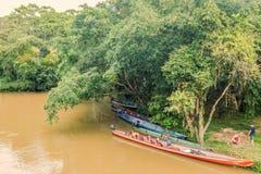 Lago Agrio, selva do Amazonas, Ámérica do Sul Imagens de Stock Royalty Free