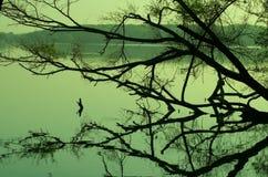 Lago Ahmadabad, Goudjerate Thol immagine stock