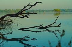 Lago Ahmadabad Thol, gujarat imagens de stock
