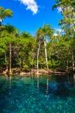 Lago ainda azul na floresta Fotos de Stock Royalty Free