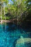 Lago ainda azul na floresta tropical escura Foto de Stock