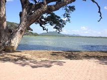 Lago al kataragama vicino Fotografia Stock Libera da Diritti