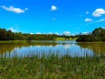 Lago al parco Jells, collina dei carrai Fotografie Stock