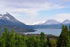Lago Alaska Skilak Fotografia Stock Libera da Diritti