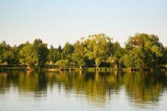 Lago, alberi Immagine Stock Libera da Diritti