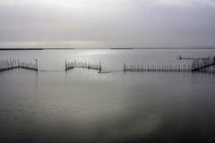 Lago Albufera, Valencia, España Foto de archivo