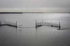 Lago Albufera, Valencia, España Foto de archivo libre de regalías