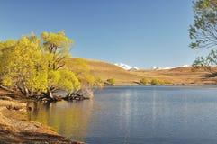 Lago Alexandrina Imágenes de archivo libres de regalías