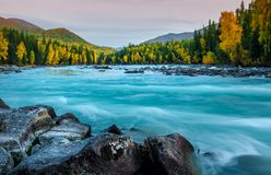 Lago all'autunno, Xinjiang, Cina Kanas fotografie stock libere da diritti