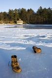 Lago all'inverno Fotografie Stock