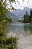 Lago Almsee Fotografia Stock