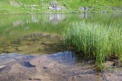 Lago alpestre Nesamovyte en las montañas del verano foto de archivo libre de regalías