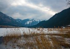 Lago in alpi austriache nell'inverno Fotografie Stock Libere da Diritti