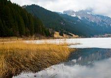 Lago in alpi austriache nell'inverno Immagine Stock Libera da Diritti