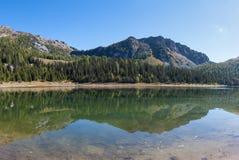 Lago alpino Fotos de Stock Royalty Free