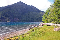 Lago alpino brilhante Foto de Stock Royalty Free