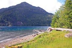 Lago alpino brillante fotografia stock libera da diritti