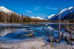 Lago alpino de Alaska congelado. Foto de archivo