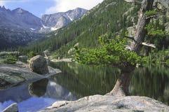 Lago alpino em montanhas rochosas Fotos de Stock