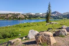 Lago alpino a lo largo de la carretera de Beartooth Parque de Yellowstone, Wyoming Imagen de archivo libre de regalías