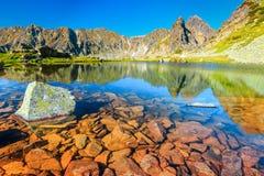 Lago alpino maravilhoso da montanha, montanhas de Retezat, a Transilvânia, Romênia, Europa foto de stock