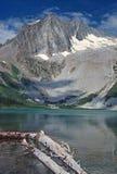 Lago alpino nel Wilds Fotografia Stock Libera da Diritti