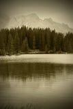 Lago alpino sepia Fotografia Stock