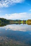 Lago alps Fotografie Stock Libere da Diritti