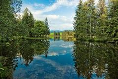 Lago alps e foresta selvaggia Fotografie Stock