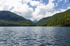 Lago Alpsee, con i cigni, alpi bavaresi, Germania Fotografia Stock Libera da Diritti