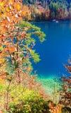 Lago Alpsee La Baviera, Germania Fotografie Stock