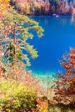 Lago Alpsee La Baviera, Germania Fotografia Stock Libera da Diritti