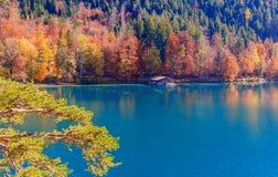 Lago Alpsee La Baviera, Germania Immagini Stock