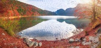Lago Alpsee nei colori di autunno Fotografia Stock Libera da Diritti